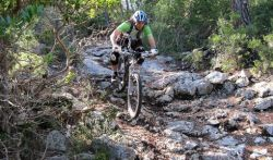 Hiking and mountain biking trails on the reserve for extreme and moderate exercise