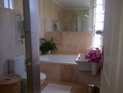 Mountain view en-suite bathroom with bath and shower