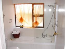 Bathroom - bath and hand shower