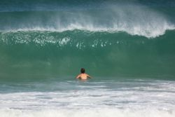Swimming for the brave