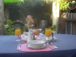 Breakfast served in the courtyard under the vines