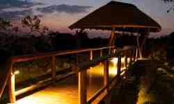 Lentswe Hide, easily accessible from our boma - a lovely place to relax and take in the surroundings.