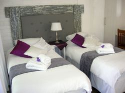 Our rooms are comfortably and stylefull equipped with twin or king size beds.