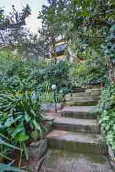 A walkway of stairs through lush gardens.