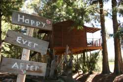 honeymoon tree house