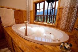 Tree House Spa Bath