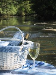 Enjoy a pic-nic or some fly-fishing on the Mooi river