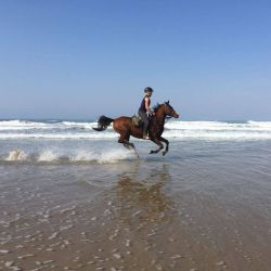 Horse Riding in the waves
