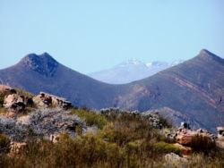 From the highest point in the reserve, the Great Swartberg is visible in the distance - snow-capped.
