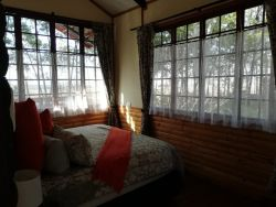 Sunbird cottage bedroom, King size bed, private & secluded, view out across to mountains, lots trees