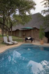 Zebra Bush Lodge Swimming Pool